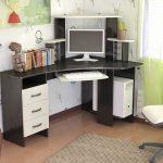 chaise d'ordinateur légère petite
