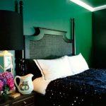 Mobilier noir dans la chambre verte