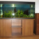 piédestal pour aquarium 500 litres