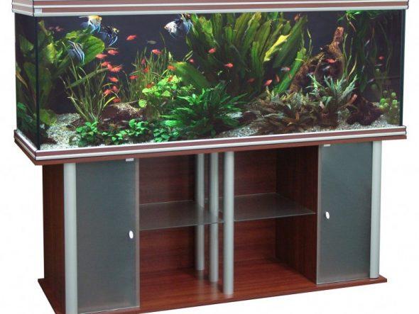 le choix des armoires design sous l'aquarium