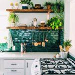 Étagères ouvertes pour les plantes dans la cuisine