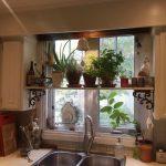 Hylly kukkia keittiön ikkunassa