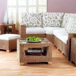 Pour le style de meubles en osier écologique sera très pertinent