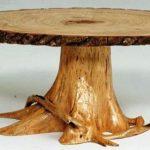 Une table d'une souche et la coupe d'un arbre