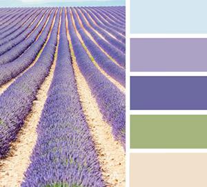 Kleurbereik Provence