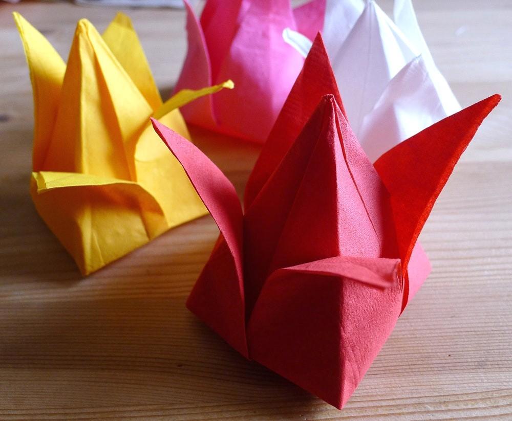 origami irissen