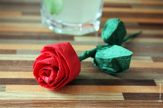 rose de la photo de la serviette