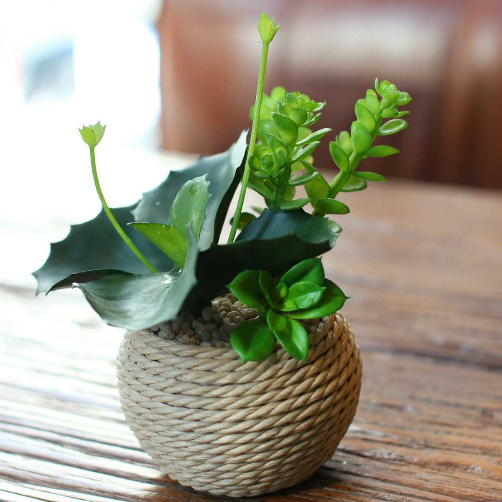 décor de vase avec ficelle